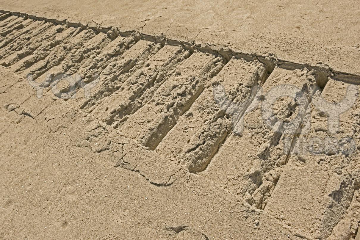 With Tracks Excavator